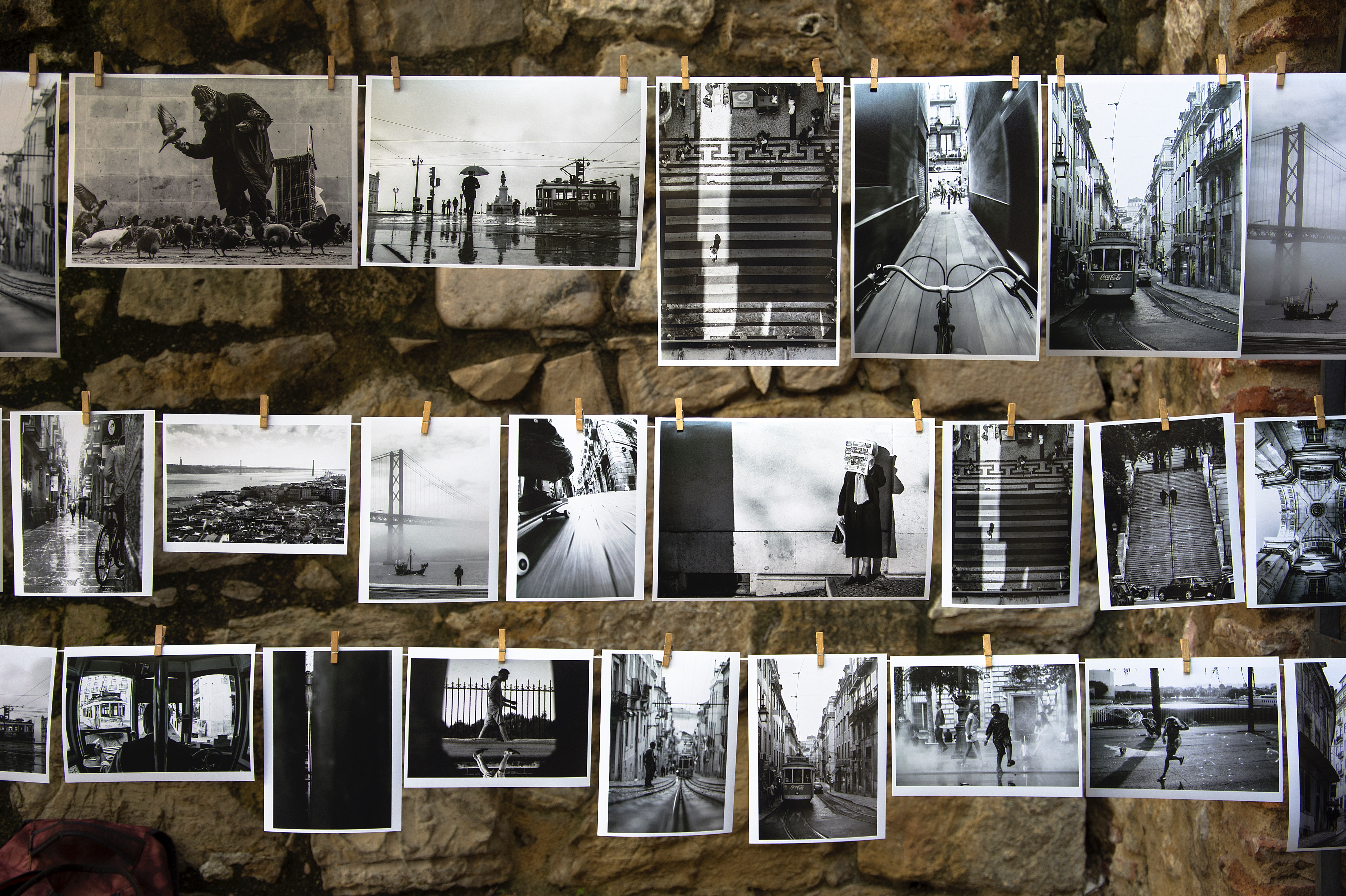 Collection of photographs pegged to washing line